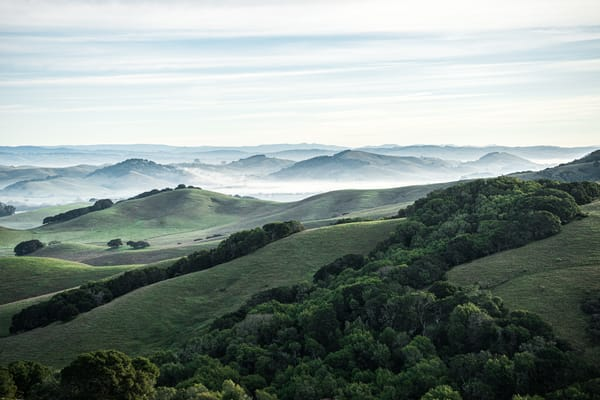 Petaluma Country - California country sunrise landscape photograph print