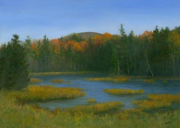 *Mountain Marsh, Pinkham Notch Art | Tarryl Fine Art
