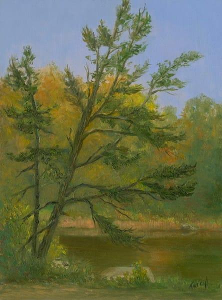*Leaning Tree Art | Tarryl Fine Art