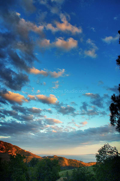 splendor, twlight, color, impressed, balance, beauty, nature, backyard, jackierobbinsstudio, photographicprints, buyartonline