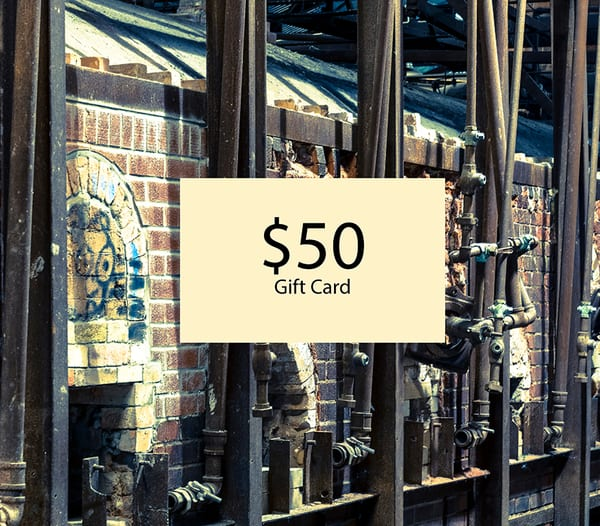 $50 Gift Card | Elizabeth Stanton Photography