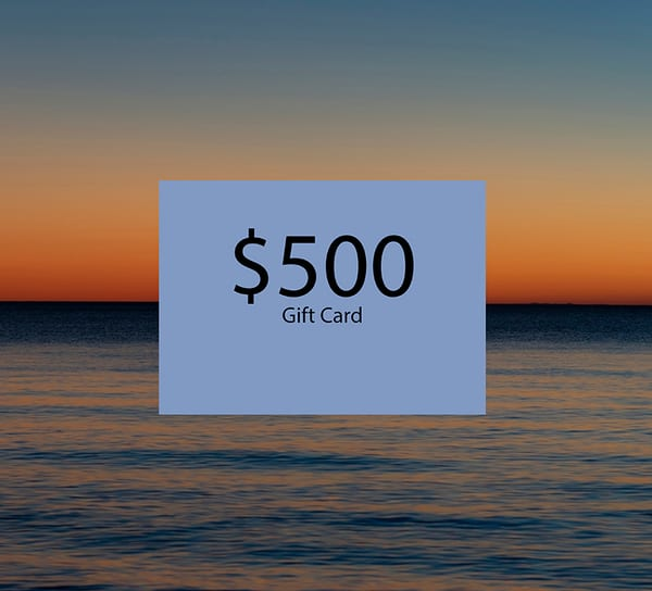 $500 Gift Card | Elizabeth Stanton Photography