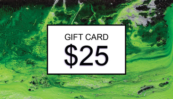 $25 Gift Card | Cesar Rodrigues fine art