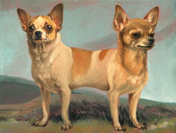 Two Headed Chihuahua Original Art   Kym Day Studio