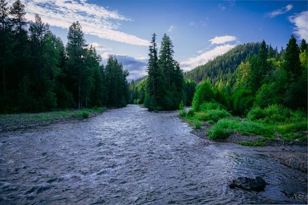 Confluence of Two Rivers, Washington, 2020