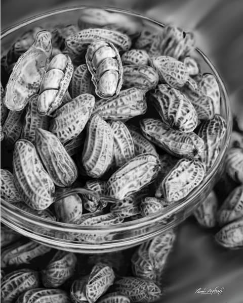 Boiled Peanuts Art | TEMI ART, LLC.