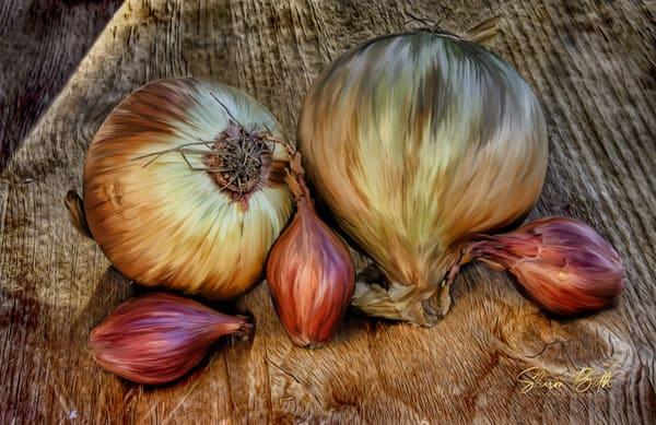 Onion Family Art | Sharon Beth