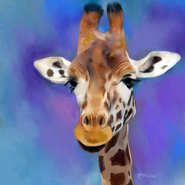 Giraffe, Purple, Giraffe portrait, Giraffe eyes, Savannah