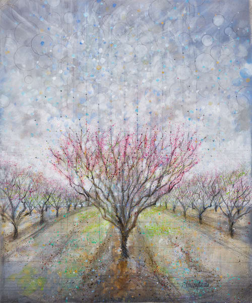 Ascension Of The Peach Orchard; Spring Art | Freiman Stoltzfus Gallery
