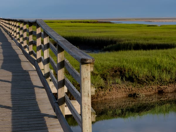 Yarmouth Port Boardwalk, Cape Cod Photography Art | Ben Asen Photography