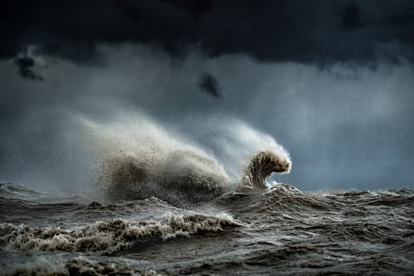 Nessie Photography Art | Trevor Pottelberg Photography