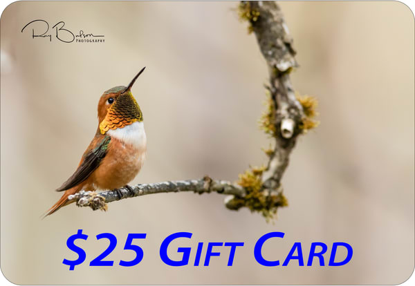 $25 Gift Card | Ray Bulson Photography