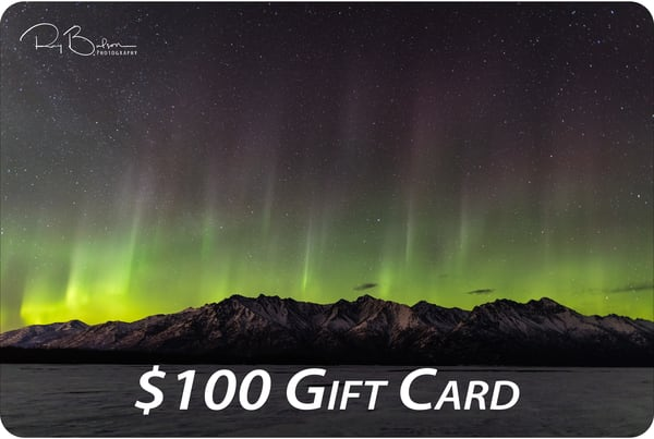 $100 Gift Card | Ray Bulson Photography