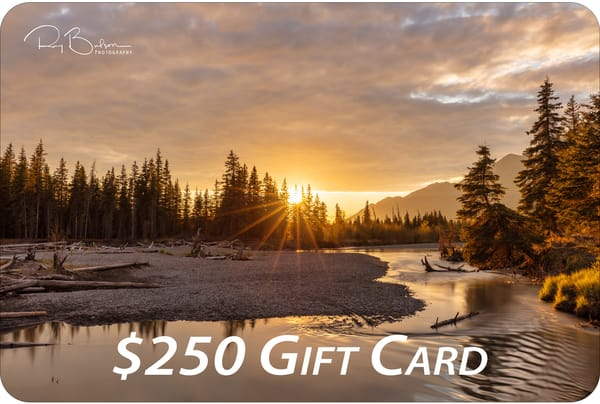 $250 Gift Card | Ray Bulson Photography