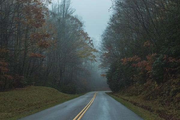 Fall Drive Photography Art | Austin Marvel