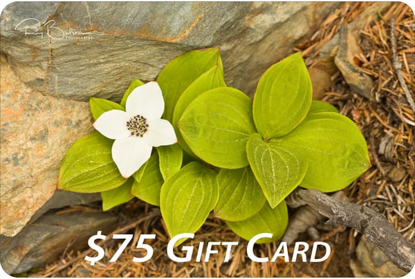 $75 Gift Card | Ray Bulson Photography