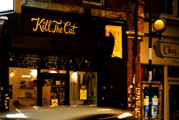 Kill The Cat Photography Art | LenaDi Photography LLC