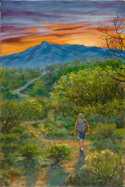 Valley Of Search Art | Roxana Sinex Art