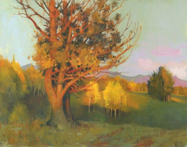 Evening Light Art | Studio Girard