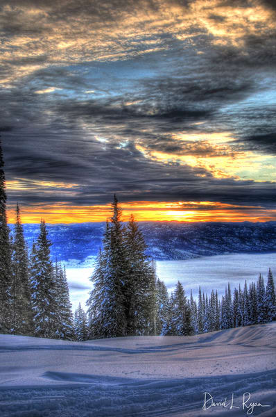 Idaho_Tamarack_035