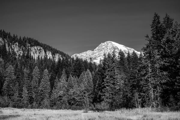 Mt. Rainier, Longmire Meadows, Washington, 2020