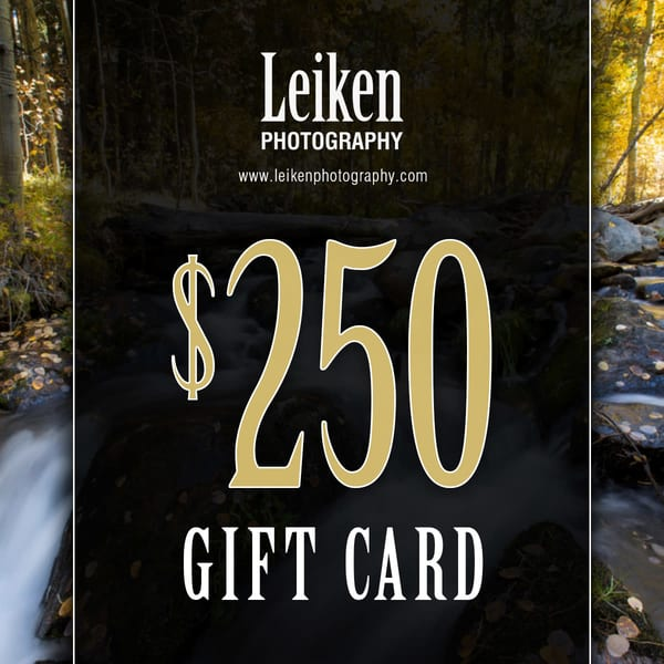 $250 Gift Card   Leiken Photography