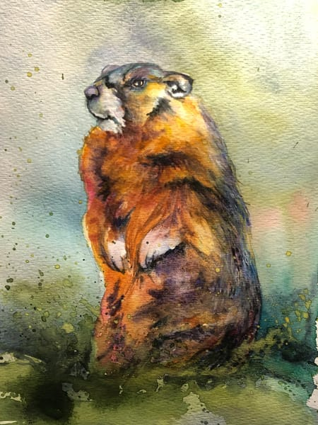 Original Wildlife Groundhog Painting Art | Christy! Studios