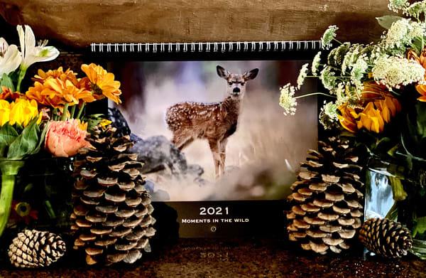 Wall Calendar 2021 | offleashphotography