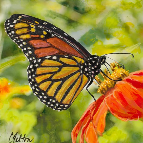 Monarch Art | Channe Felton Fine Art