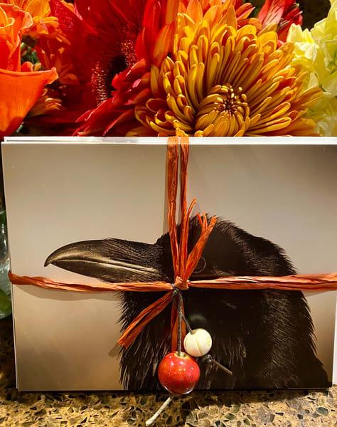 Raven Cards Set | offleashphotography