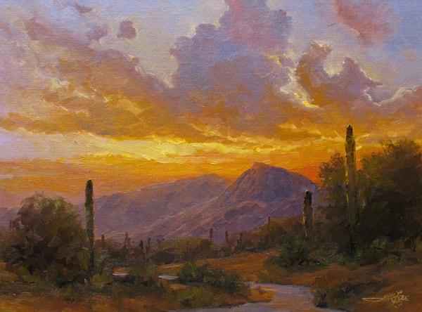 Sky Of The Sonoran Desert Art | Artisanjefflove