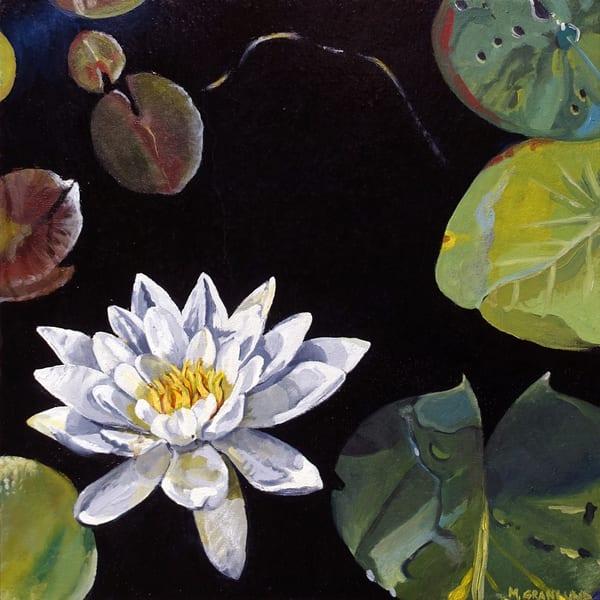 Waterlily by Mark Granlund