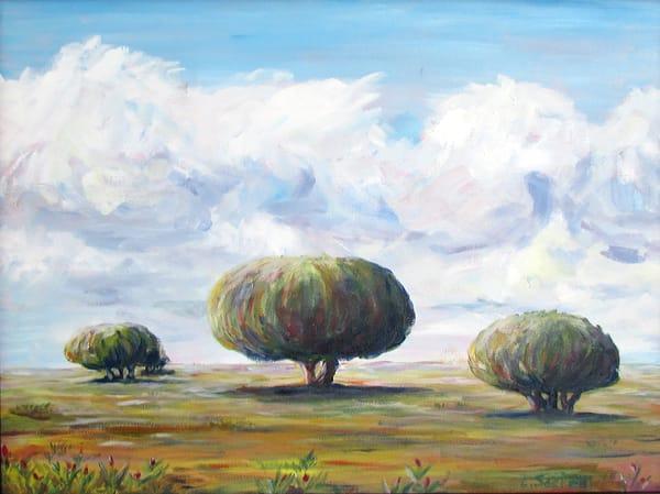 On The Plains Of Spain Art | Linda Sacketti