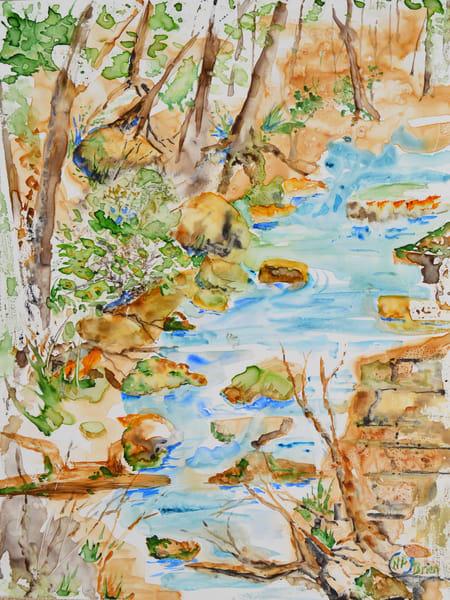 Woodland Stream Refuge Art | Color Splash Ranch