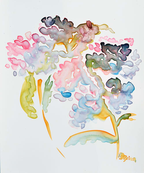 Hydrangea Shadow Art | Color Splash Ranch