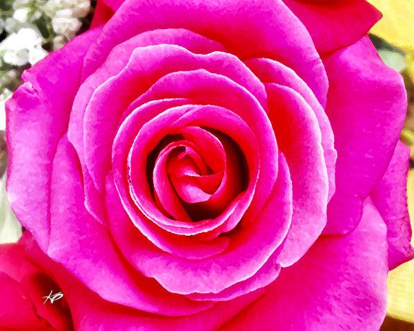 La Vie en Rose 2 artwork by artist Karlana Pedersen