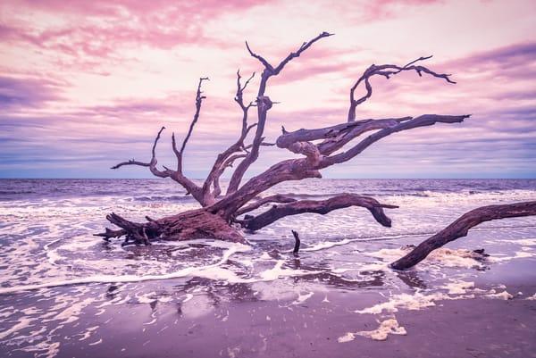 Jekyll Island Sunset | Susan J Photography