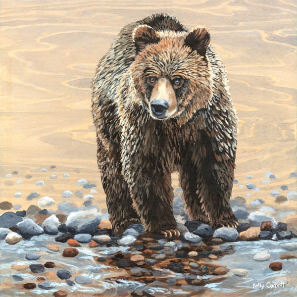Ursus Arctos, grizzly bear limited edition print in support of the Great Bear Rainforest.