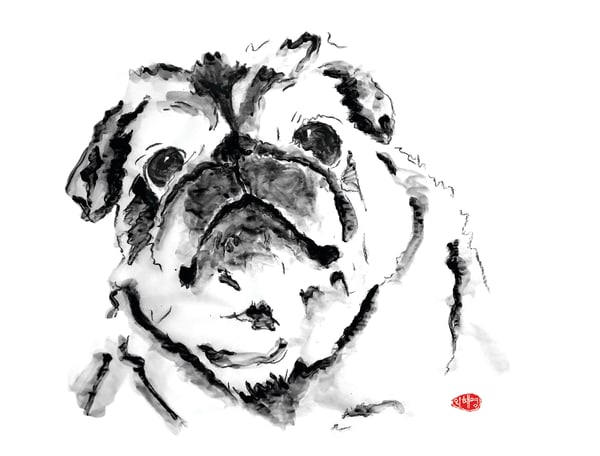 Bailey: Pug Art | Youngi-Sumistyle pets