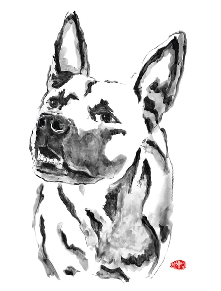 Lilah: German Sheherd Pittbull Mix Art | Youngi-Sumistyle pets