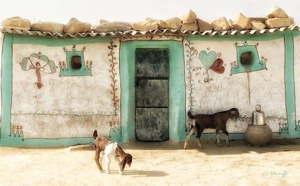Goat House Art | Danny Johananoff