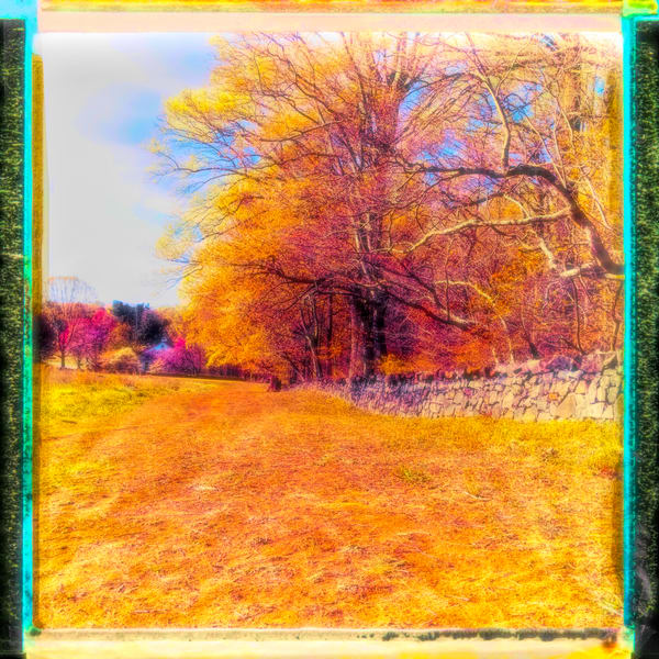 Spring Day In The Park|Fine Art Photography prints for sale by ToddBreitlingArt.com