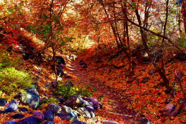 Autumn Shadows Art | Oz Fine Art Studio