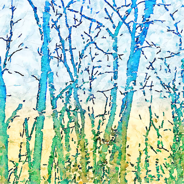 spring woods, watercolor-photo, print,