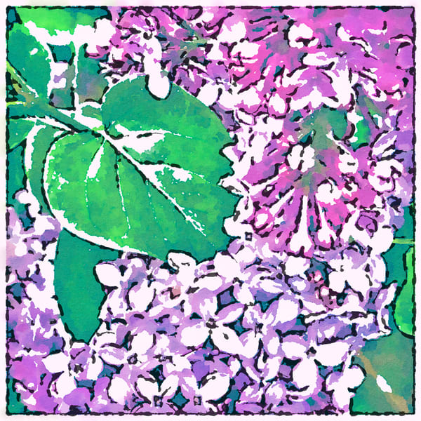 Lost in Lilacs, photograph, flower photo, garden-tiles
