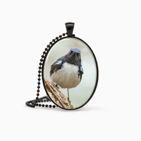 Black Throated Blue Warbler 1 Pendant | Deb Little Photography
