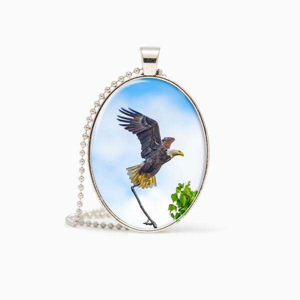 Bald Eagle 1   Pendant | Deb Little Photography