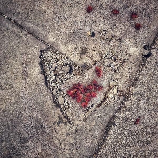 Blended-Street-Heart, sidewalk heart, photograph