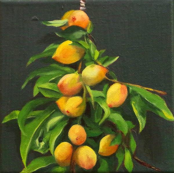 Peach Branches Art | Helen Vaughn Fine Art