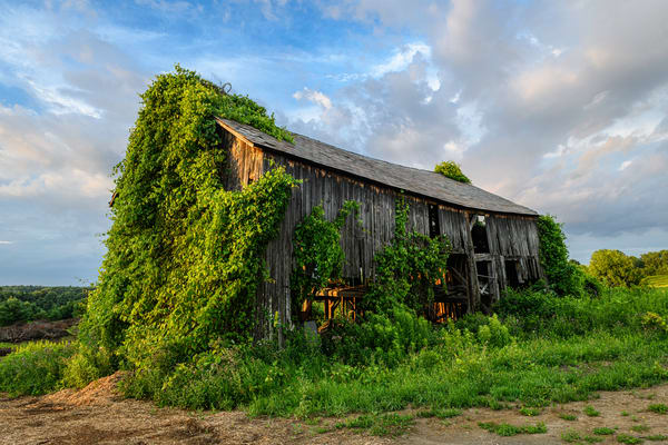 Country Charm Art | Photography By Festine